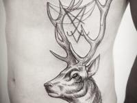 Татуировка олень на боку