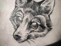 Татуировка енот на животе
