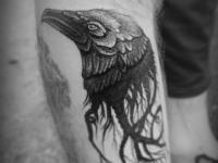 Татуировка ворона на предплечье