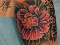 Татуировка пион и иероглифы на плече