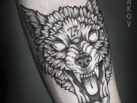 Тату головы свирепого волка на руке