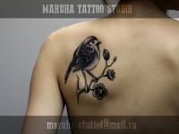 Татуировка птичка на ветке на лопатке