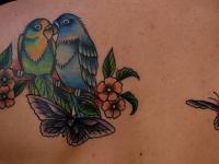 Татуировка попугаи и бабочка на спине