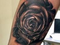 Татуировка черно-белой розы на руке