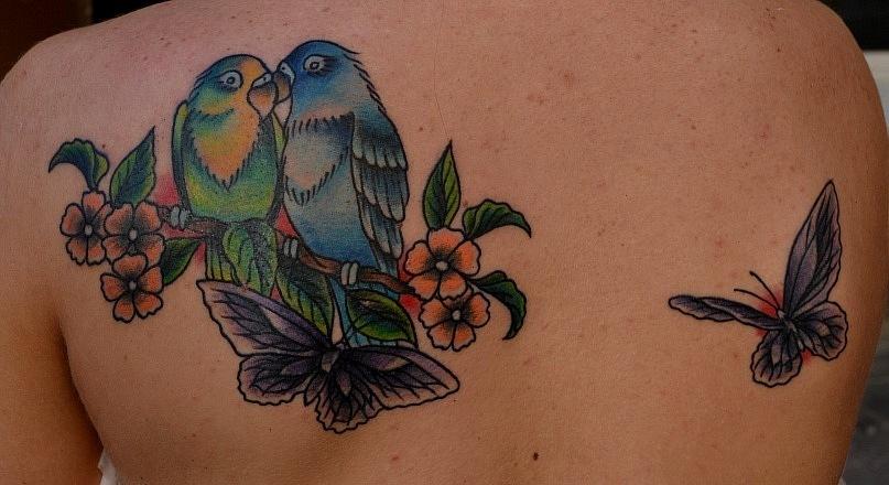 Татуировка выполнена на спине. Обладательница этой тату занимается разведением и дрессировкой попугаев. Для девушки был разработан индивидуальный эскиз, за основу которого была взята картинка с открытки. Этой работой мастер Виолетта Доморад спрятала старую некачественную татуировку (молнии на лопатках).