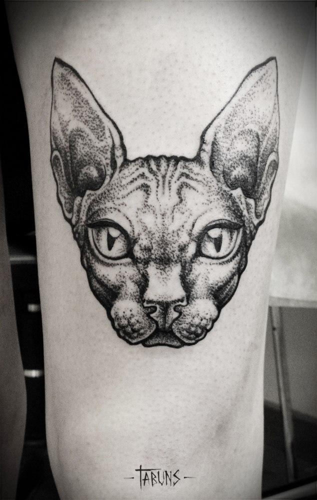 Художественная татуировка от Александры Табунс. Сфинкс.