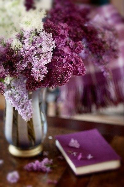 Прекрасные дамы! В честь замечательного праздника весны, 8 Марта, все мастера Загородного проспекта,12 приготовили вам подарок!