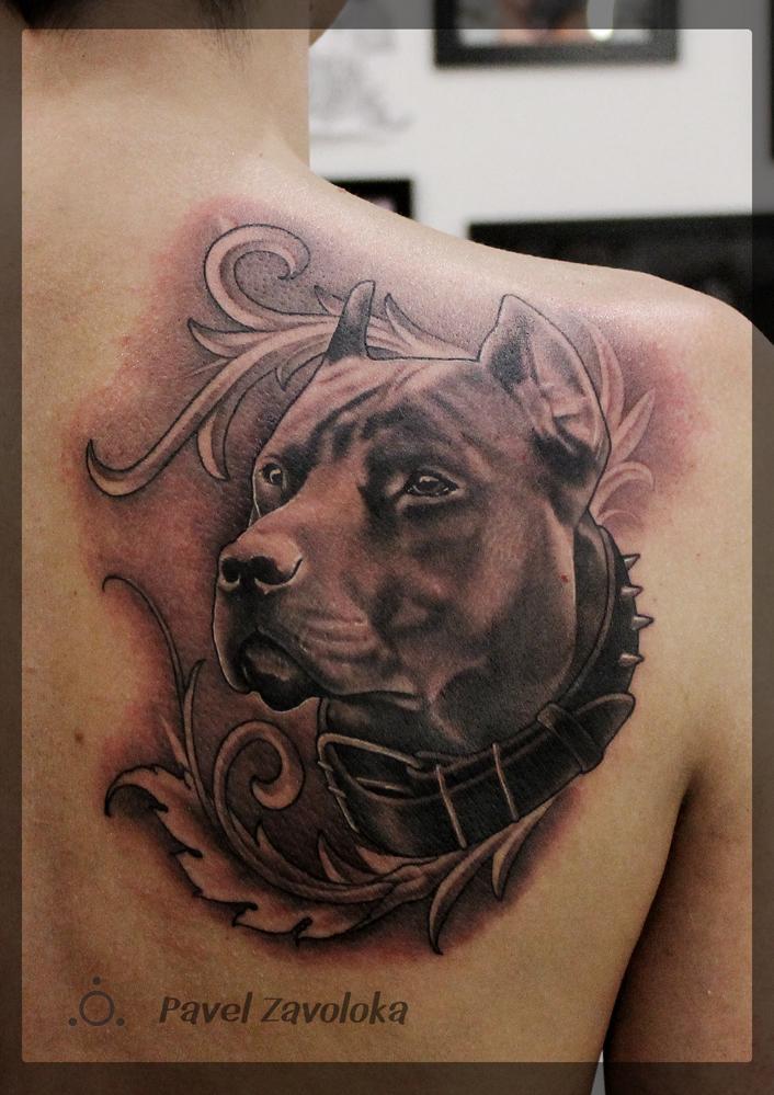 Художественная татуировка «Собака». Мастер Павел Заволока.