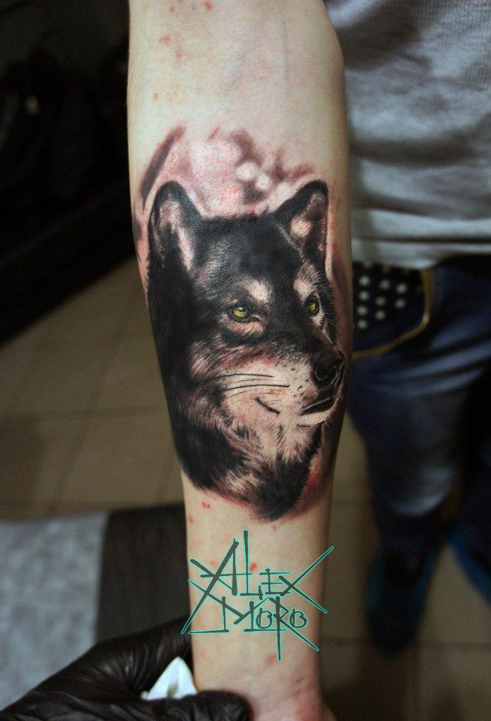 """Художественная татуировка """"Волк"""" от Александра Морозова"""