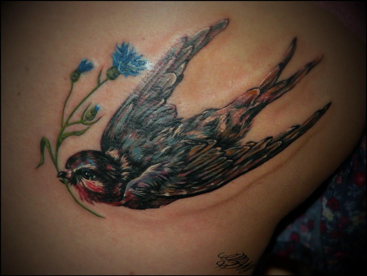 """Художественная татуировка """"Ласточка с васильком"""". Мастер Мария Скляр."""