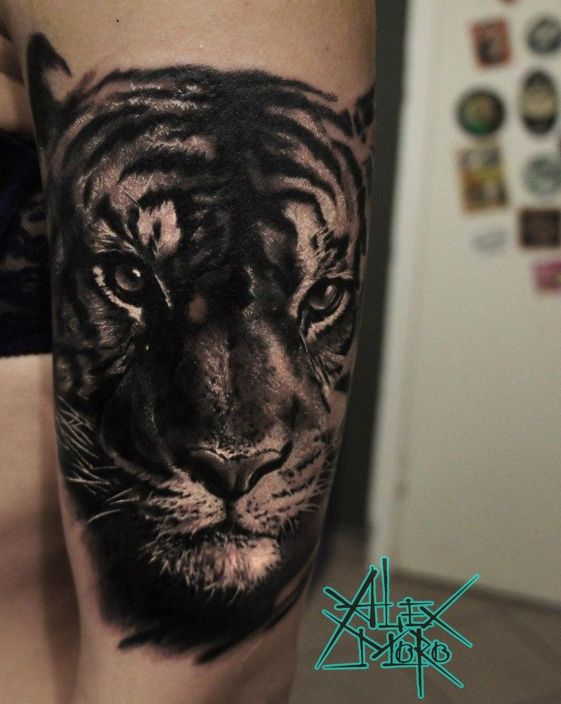 "Художественная татуировка ""Тигр"" от Александра Морозова"