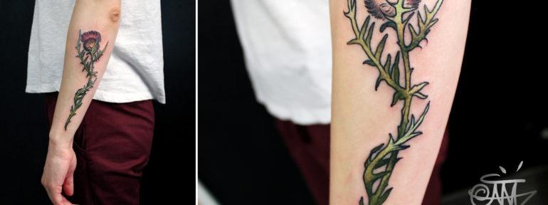 Художественная татуировка «Чертополох» от мастера Анны Корь