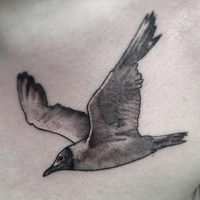 """Художественная татуировка """"Чайка"""". Мастер- Вася Эверест."""